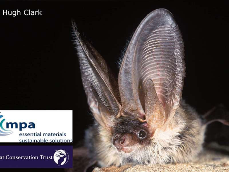 MPA and Bat Conservation Trust