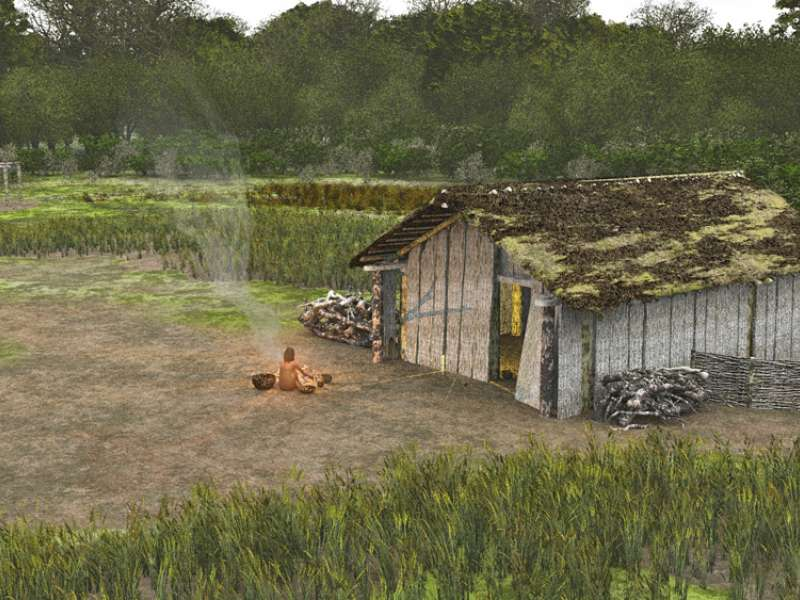 Neolithic houses