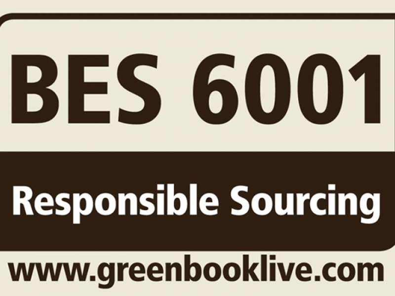 BES 6001 rating