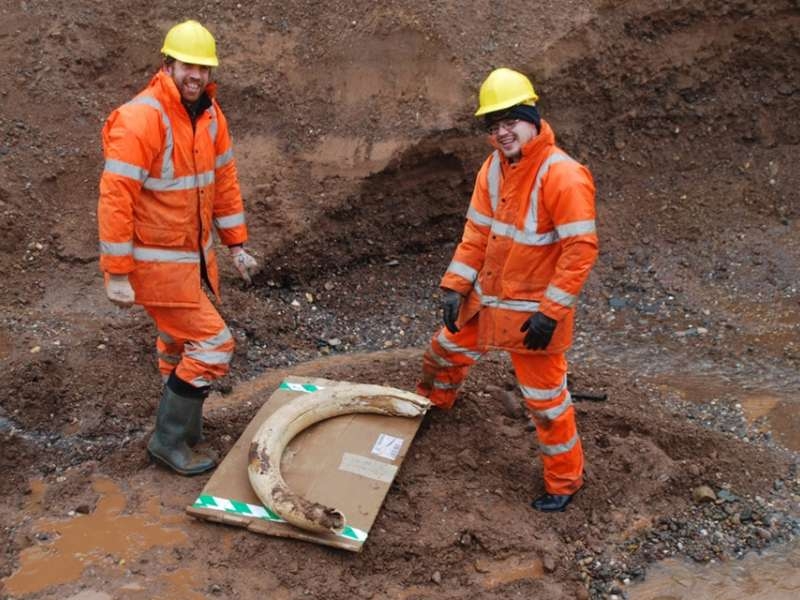 Woolly mammoth tusk unearthed at Tarmac site
